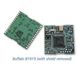 Buffalo (B1919)